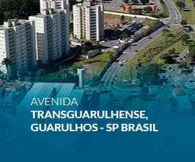 Avenida Transguarulhense, Guarulhos - SP  Brasil